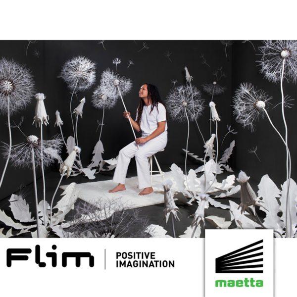Flim - Positive Imagination