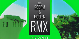 Disscut, nuOn Green, Melodic House & Techno Song