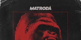 Matroda, Insomniac Records, Tech House playlist