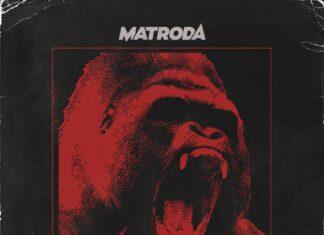 Matroda, Insomniac Records, Tech House playlist