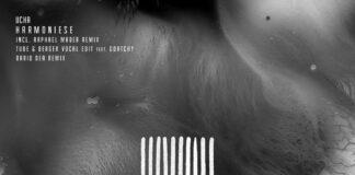 UCHA (Raphael Mader Remix, Tube & Berger Vocal Edit) 'Harmoniese' on ZENH Records