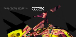 StoKed, Fire Between Us, Codex Recordings, new peak time Techno music