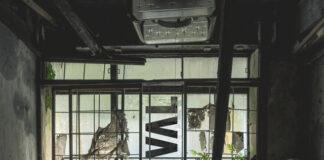 Jaffna - Rival - Enchanté Music - new Future Garage music - Jaffna album