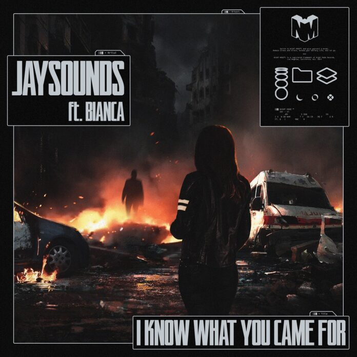 JaySounds, new JaySounds music, Insomniac's Night Mode Records, What You Came For