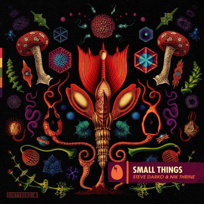 Steve Darko & Nik Thrine - Small Things, Dirtybird Records 2021, Deep Tech House, new Steve Darko music