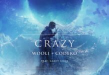 Wooli & Codeko - Crazy (feat. Casey Cook) is OUT NOW! This new emotional breakup song is available on all streaming apps via Ophelia Records.